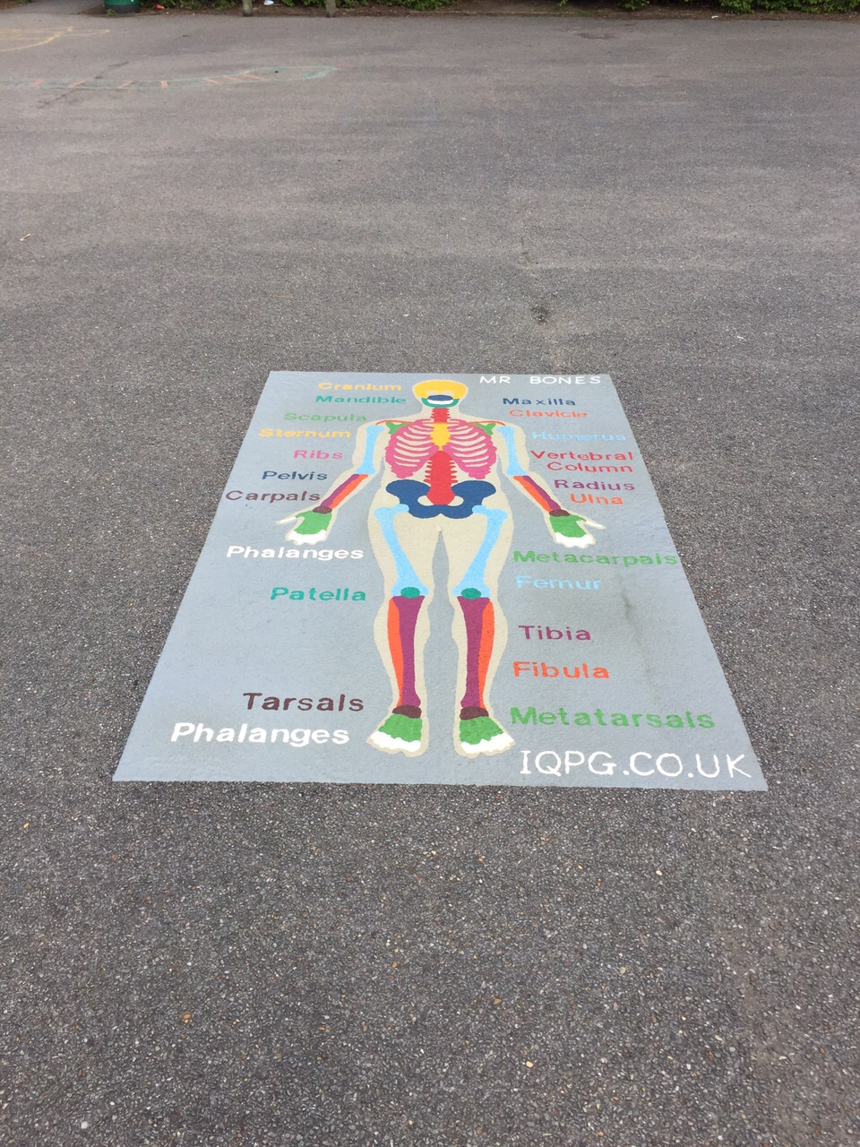 playground markings of the body